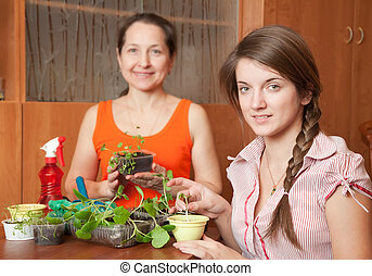 Two women with  seedlings