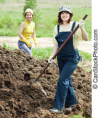 women works with animal manure - Two women works with animal...