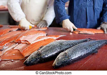 two worker in fish industry - two men cutting salmon in fish...