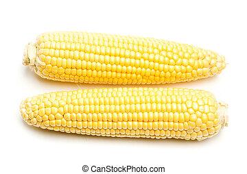 Two yellow corns