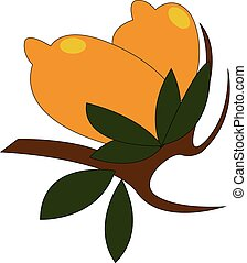 Two yellow lemons with green leaves on a brown branch vector illustration on white background