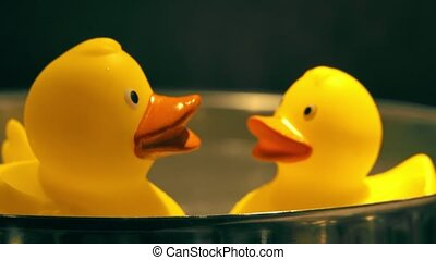 Two yellow rubber ducks in hot water - Two toy yellow rubber...
