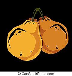 Two yellow simple vector pears, ripe sweet fruits...