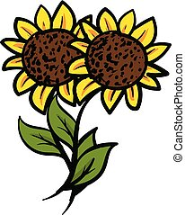 Two yellow sunflowers with green leaves vector illustration on white background
