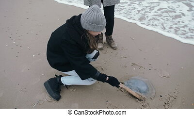 A teenage girl touches an dead jellyfish with a stick.