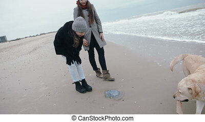 Two young girls on a walk with a dog on the beach find a jellyfish.