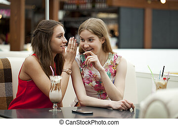 Two young girls sitting in cafe talking