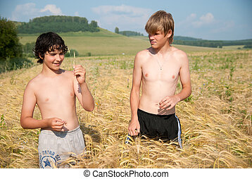 Two young guys on a rye field