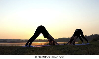 Two Young Women do Yoga Dog Head up And Down Exercises at Sunset
