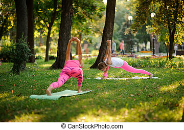 Two young women doing yoga exercises on the grass in a park
