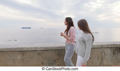 Two young women friends walking on the quay. Mid shot