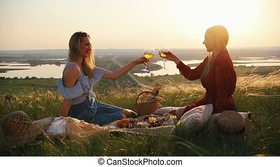 Two young women have a picnic. They clink glasses and talk....