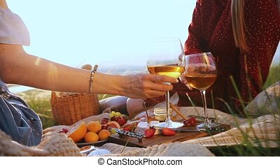 Two young women have a picnic. They raise glasses and clink...