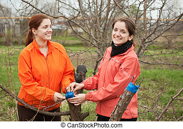 women inarching branch to tree - Two young women inarching ...