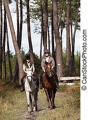 twosome, di, cavalieri equini