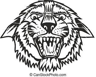 tygrys formują główki