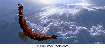 tyhe, 鹰, 飞行, 云, 在上面