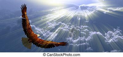 tyhe, 독수리, 비행, 구름, 이상