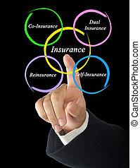 Type of Insurance