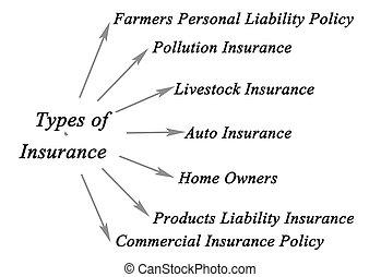 types, de, assurance