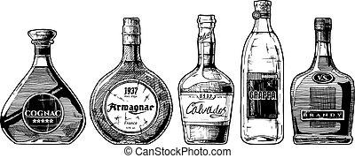 types of Brandy - Vector hand drawn illustration set of ...