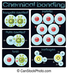 Types of chemical bonding diagram. Covalent polar and...