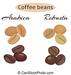 Types of coffee beans. Arabica and robusta - Arabica and...
