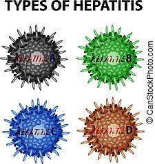 Types of Hepatitis. Viruses Hepatitis A, B, C, D. ...