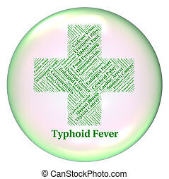 Typhoid Fever Indicates Symptomatic Bacterial Infection And Salm