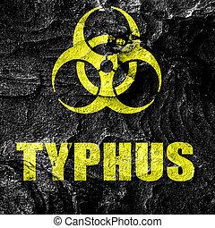 typhus, 概念, 背景