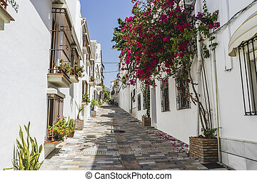 typical Andalusian streets and balconies with flowers in...