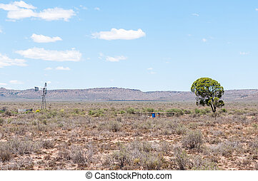 Typical arid Karoo landscape