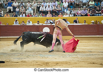 Typical bullfight. - A matador fighting in a typical Spanish...