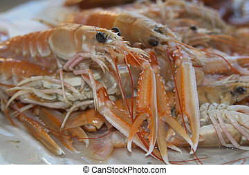 typical crustaceans of the mediterranean sea: raw langoustines