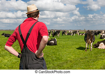Typical Dutch landscape with farmer and cows - Typical Dutch...