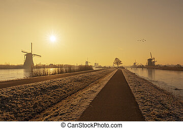 Typical Dutch rural landscape with windmill silhouettes at the early morning sunrise in Netherlands