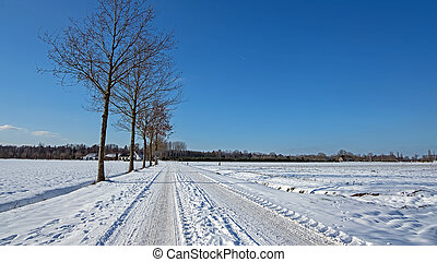 Typical dutch winter landscape in the Netherlands