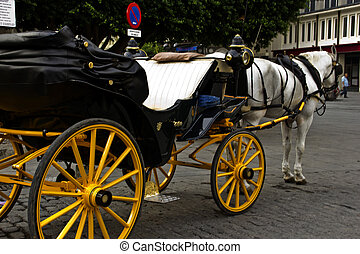 Typical horse carriage in seville
