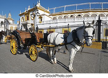 carriage - typical horse-drawn carriage in front of the ...