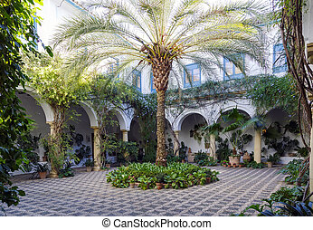 Typical Andalusian patio with fountain and numerous plants geraniums and carnations on the walls. Cordoba, Spain