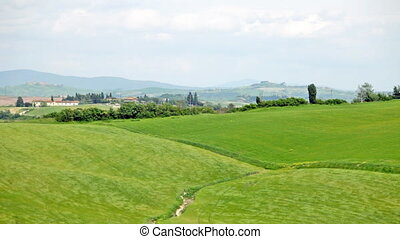 Typical landscape of Tuscany with hills and the grass waving on a wind