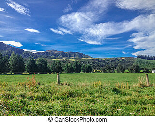 typical landscape on the South Island of New Zealand