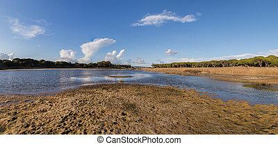 low tide marshland - Typical low tide marshland landscape on...