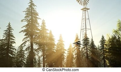 Typical Old Windmill turbine in forest at sunset