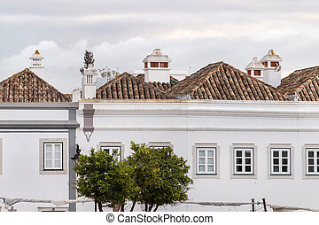 typical portuguese rooftops