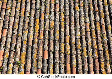 typical portuguese tile roof background