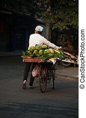 Typical street vendor in Hanoi, Vietnam.
