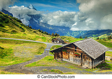 Typical Swiss alpine farmhouses and snowy mountains, Bernese...