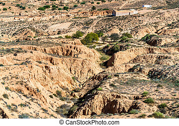 Typical Tunisian landscape in the Medenine Governorate