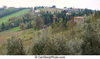 Typical Tuscanian landscape